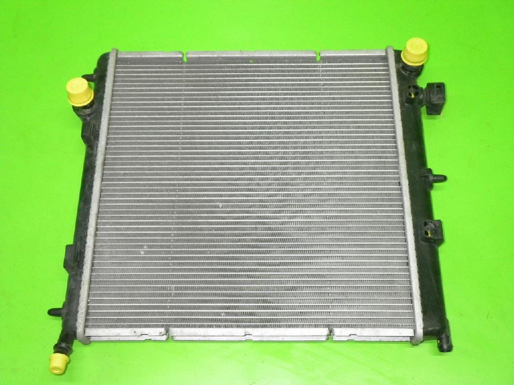 Wasserkühler PEUGEOT 207 (WA_, WC_) 1.4 1330W8