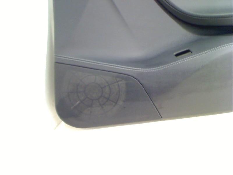 Türverkleidung rechts vorne TESLA Model S 85 52 kW 71 PS (09.2012-> ) Bild 2