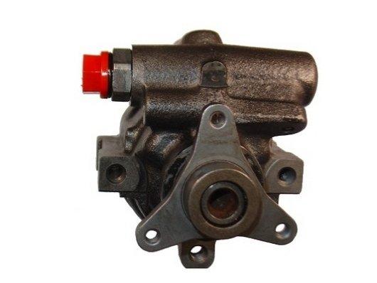 Hydraulikpumpe, Lenkung SPIDAN 53911