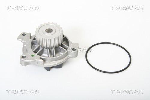Wasserpumpe TRISCAN 8600 29025