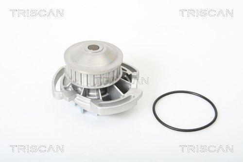 Wasserpumpe TRISCAN 8600 29142