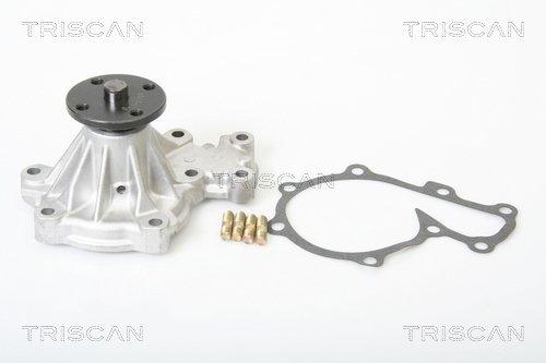 Wasserpumpe TRISCAN 8600 50007