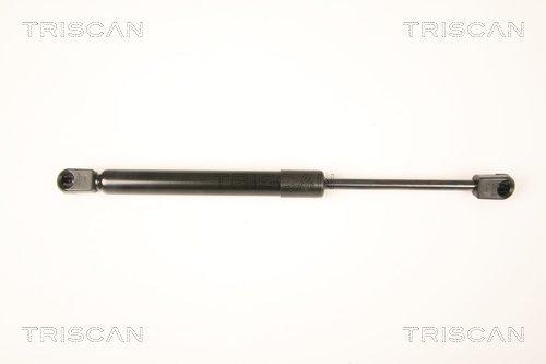 Gasfeder, Koffer-/Laderaum TRISCAN 8710 29290