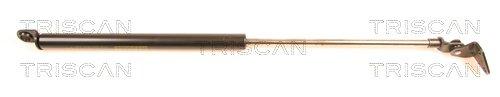 Gasfeder, Koffer-/Laderaum TRISCAN 8710 41209