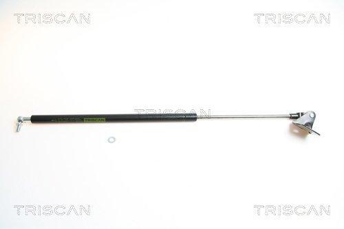 Gasfeder, Koffer-/Laderaum links TRISCAN 8710 69207