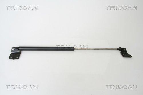Gasfeder, Koffer-/Laderaum links TRISCAN 8710 69216