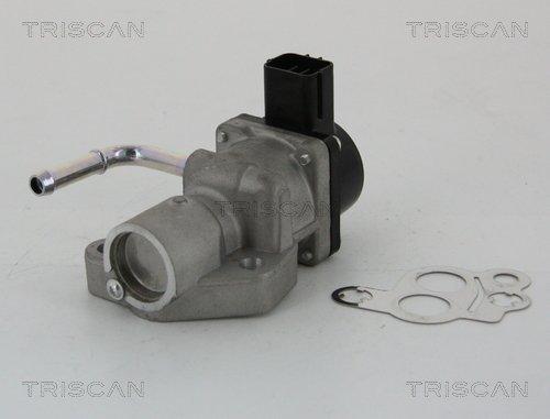 AGR-Ventil TRISCAN 8813 10014