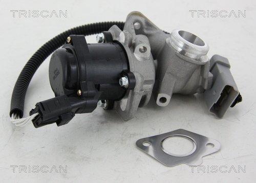 AGR-Ventil TRISCAN 8813 16034