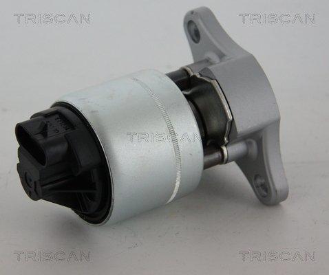 AGR-Ventil TRISCAN 8813 21006