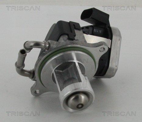 AGR-Ventil TRISCAN 8813 23002