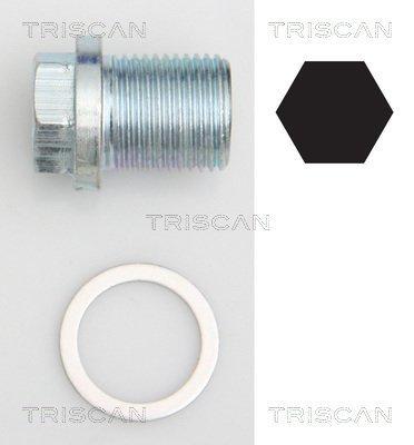 Verschlussschraube, Ölwanne TRISCAN 9500 1002