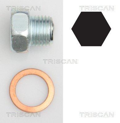 Verschlussschraube, Ölwanne TRISCAN 9500 2404