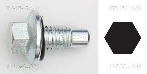 Verschlussschraube, Ölwanne TRISCAN 9500 2405