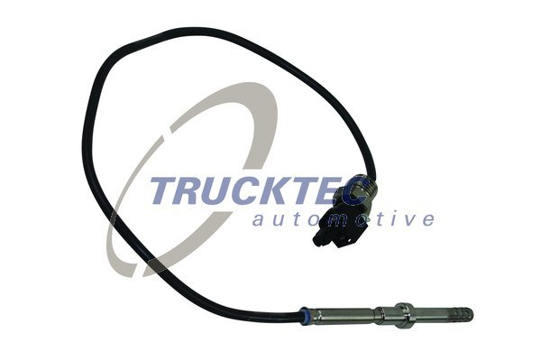 Sensor, Abgastemperatur TRUCKTEC AUTOMOTIVE 02.17.101